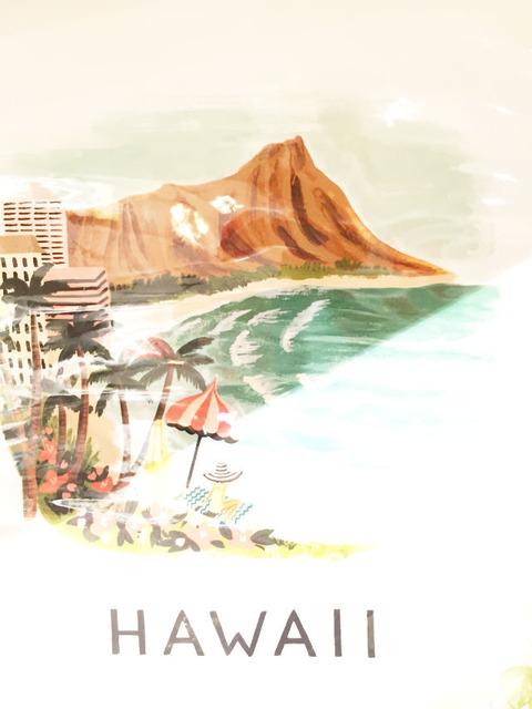 ハワイ 土産 アート